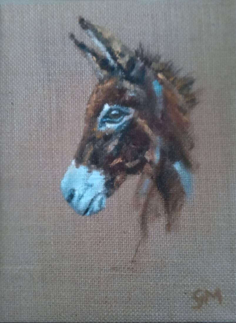 Donkey, Portrait, Georgie McBurney, Somerset, Dorset