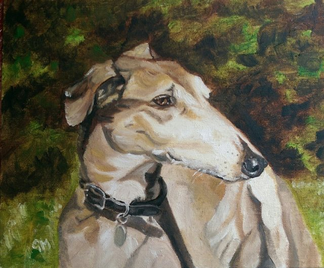Dog portrait, Artist, Georgie McBurney, Somerset, Dorset