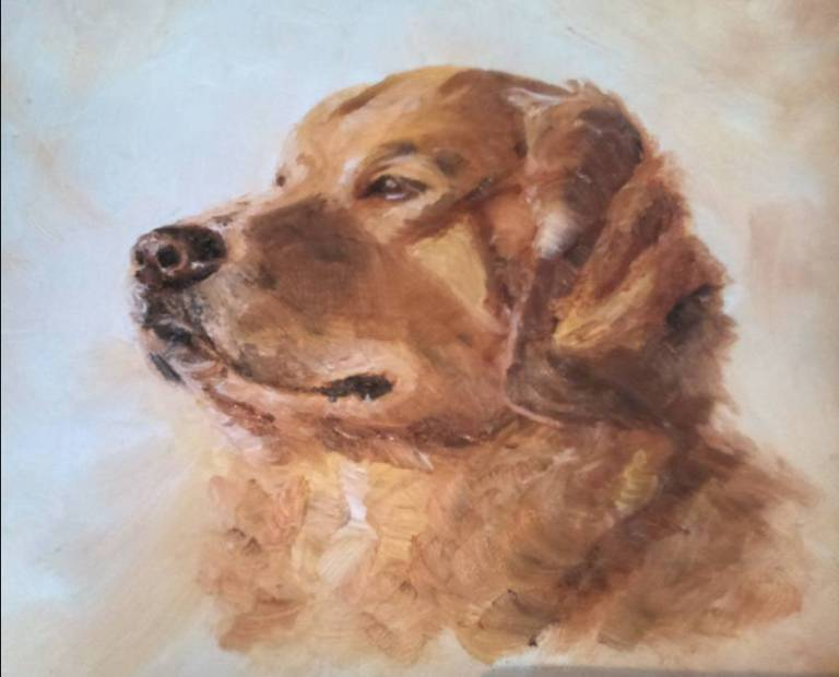 Dog Portrait, Somerset, Dorset, Georgie McBurney