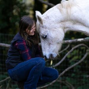 Equine, Art, Portraits, Psychic Artist, Fantasy