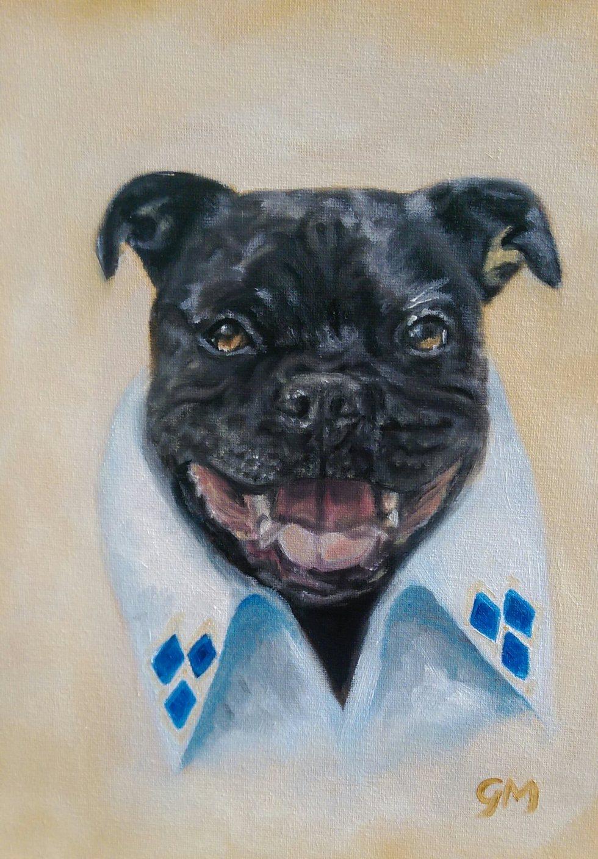 Dog, Portrait, Artist, Dorset, Georgie McBurney