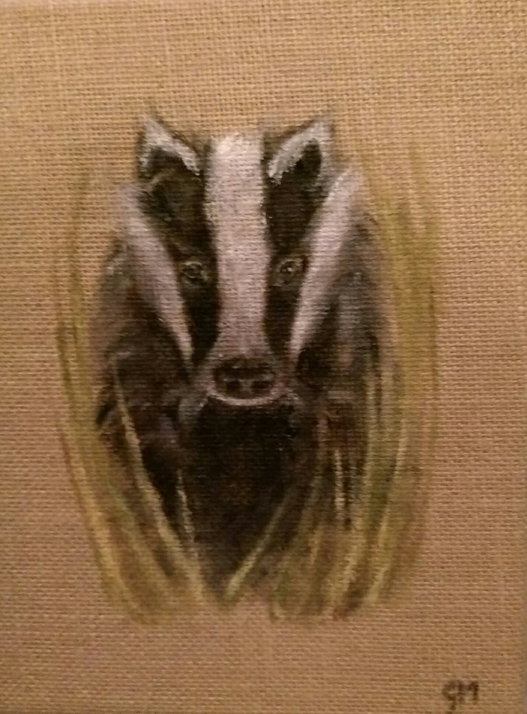 British Wildlife, Badger, Art