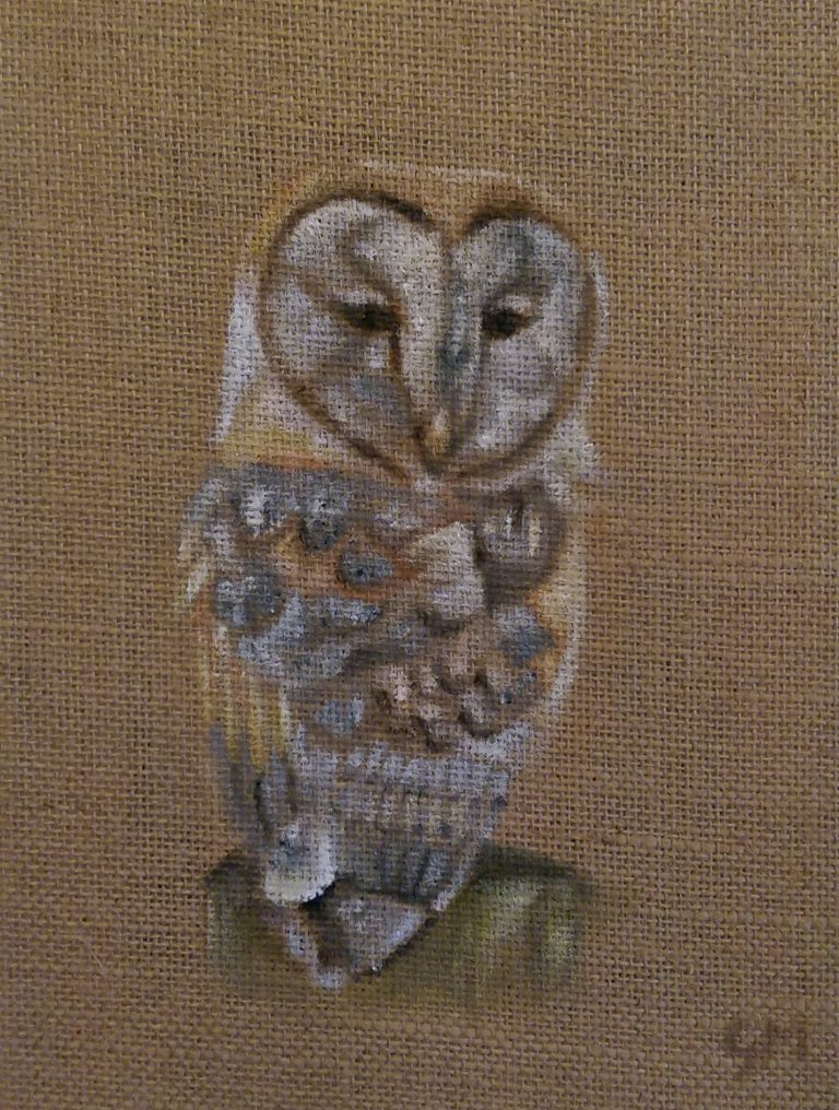 Barn Owl, Wildlife, Art, Artist, Georgie McBurney
