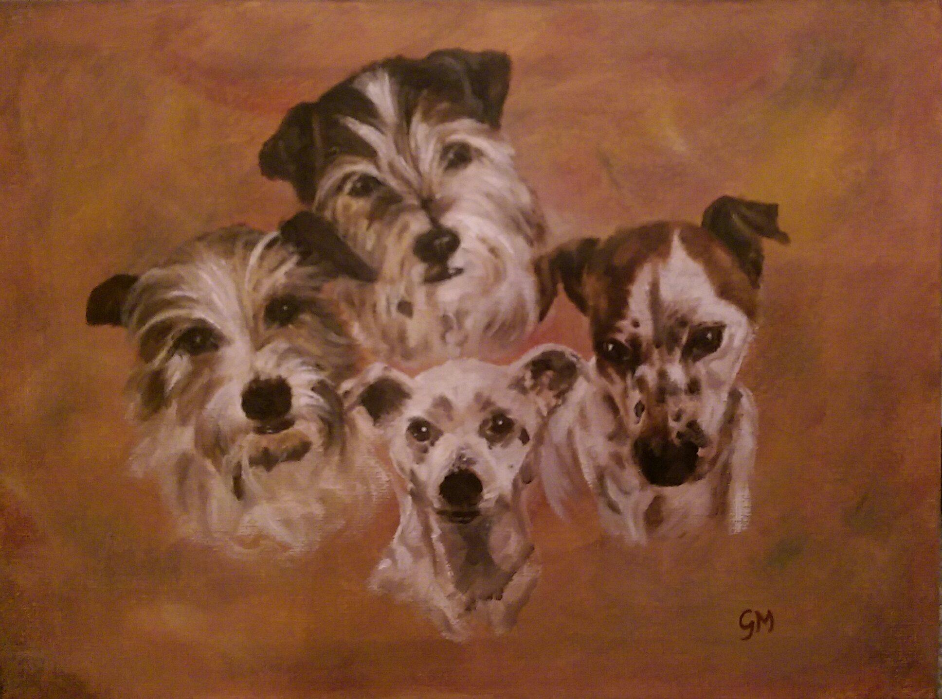 Art, Portrait, Dogs, Pets, Oils, Dorset, Georgie McBurney