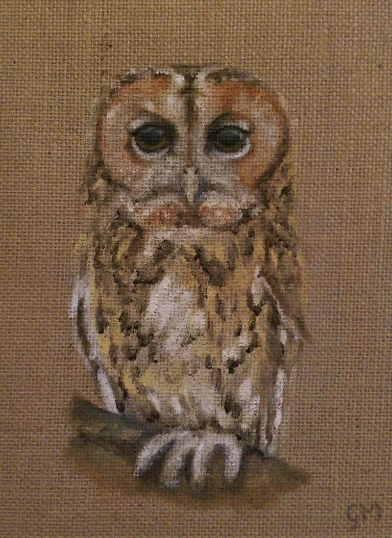 British Wildlife, Tawny Owl, Art, Artist, Georgie McBurney